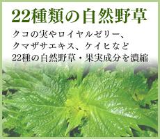 22種類の自然野草