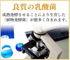 良質の乳酸菌